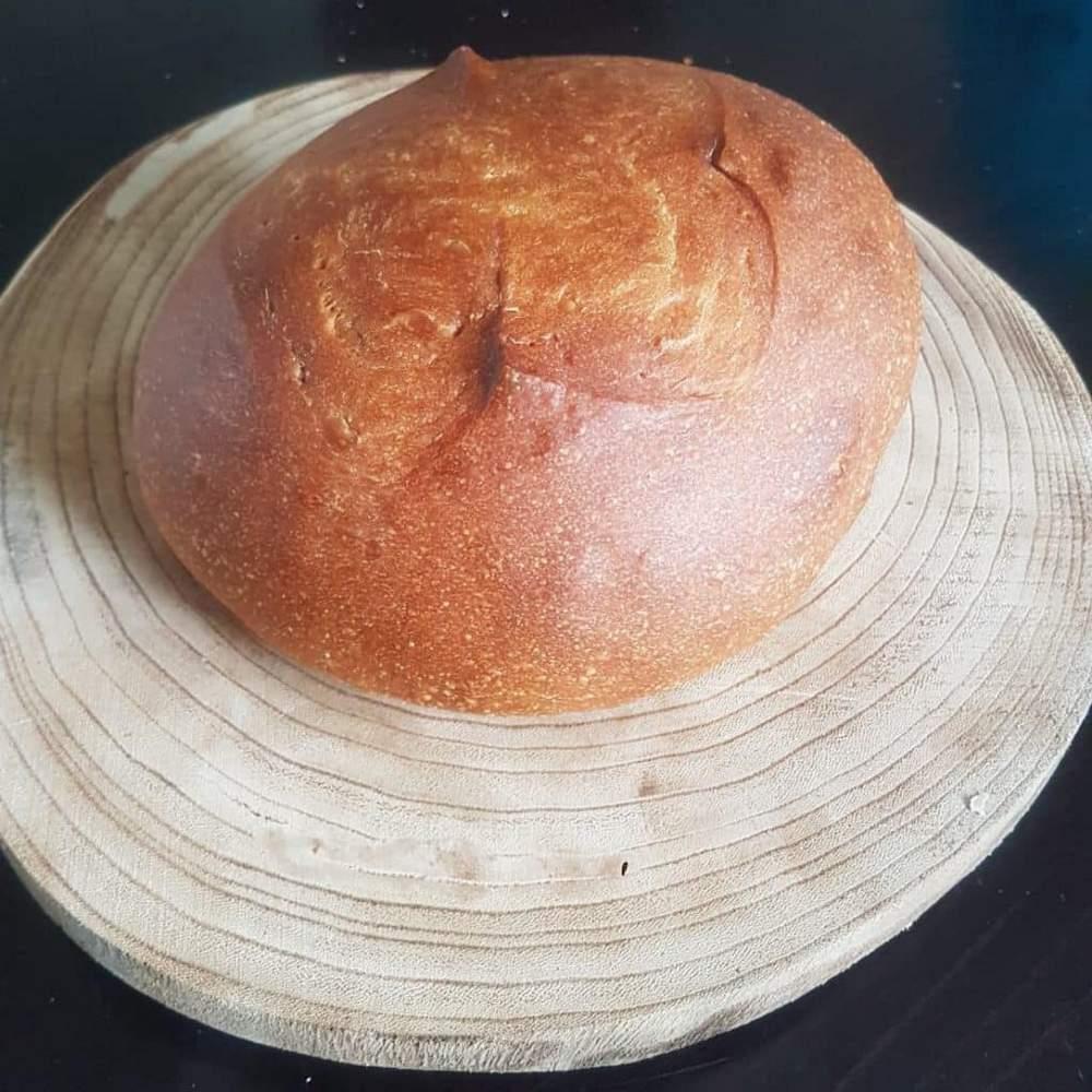 לחם ביתי מתכון בסיסי